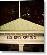 The Big Red Spring Metal Print by Lisa Russo