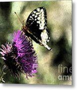 The Butterfly II Metal Print
