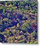 The Colors Of Autumn Metal Print by Douglas Barnard