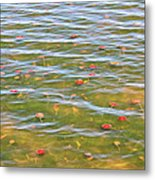 The Colors Of Lily Pads Metal Print
