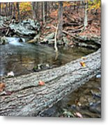 The Crossing Metal Print by JC Findley
