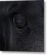 The Crying Horse  Metal Print