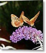 The Dancing Butterflies Metal Print