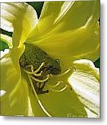 The Day Lily Met Her Prince Metal Print