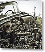 The Dirts Hold Metal Print