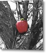 The Early Worm Gets The Apple Metal Print