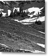 The East Slopes Of Mount Rainier II Metal Print
