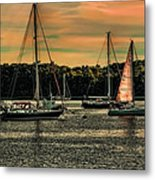 The Endless Summer Metal Print