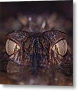 The Eyes Of A Crocodilian Metal Print