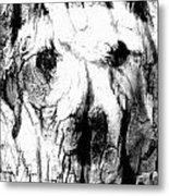 The Face In The Tree Metal Print