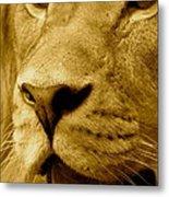 The Face Of God In Sepia Tones Metal Print
