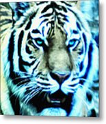 The Fierce Tiger Metal Print