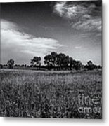 The First Homestead In Black And White Metal Print