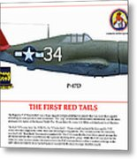 The First  Red Tails Metal Print