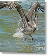 The Fishing Is Good Metal Print