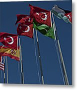 The Flags Of The Participating Nations Metal Print