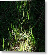 The Flames Of Green Metal Print
