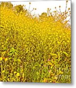 The Flowers Wait For Us Metal Print