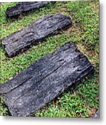 The Foothpath  Metal Print