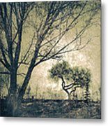 The Forgetting Tree Metal Print