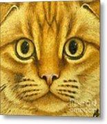 The French Orange Cat Metal Print
