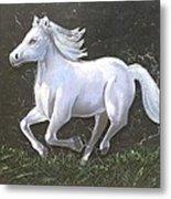 The Galloping Horse- Metal Print by Rejeena Niaz