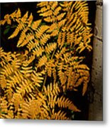 The Golden Fern Metal Print