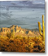The Golden Glow II Metal Print