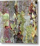 The Green Bark Of A Tree Metal Print