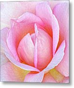 The Heart Of A Rose Metal Print