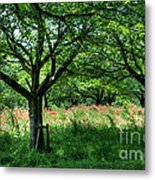 The Hill Where A Poppy Blooms  Metal Print