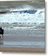 The Horse And The Sea Metal Print