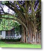 The House Beside The Banyan Tree Metal Print