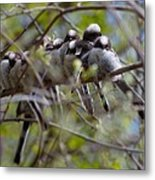 The Huddle Metal Print
