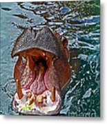 The Hungry Hippo Metal Print