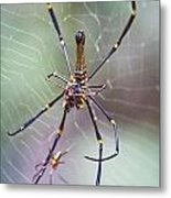The Hunter And It's Prey Metal Print