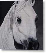 The Ivory Queen Metal Print