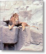 The King At Rest Metal Print