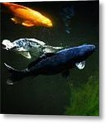 The Koi Jungle Metal Print
