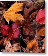 The Leaves Metal Print