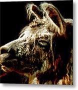 The Legendary Llama  Metal Print