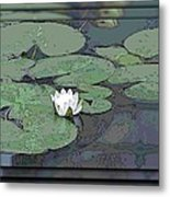 The Lily Bloom Metal Print