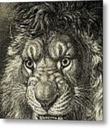 The Lion, King Of Beasts.  From El Metal Print
