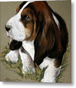 The Little Basset Metal Print by Mary Sparrow