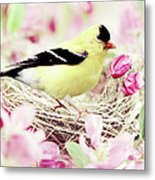 The Little Finch Metal Print by Stephanie Frey