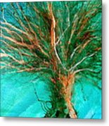 The Lone Tree Metal Print by Heather Matthews