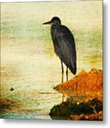 The Lonely Hunter Metal Print by Amy Tyler