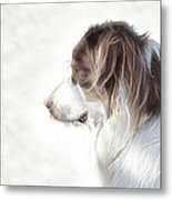 The Lookout Metal Print