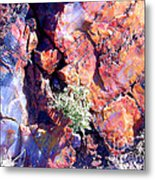 The Many Colors Of Petrified Wood Metal Print