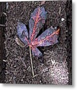 The Maple 5 Metal Print